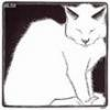 Рисунок белого кота