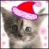 Котенок новогодний
