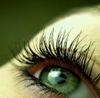 Красивый зеленый глаз