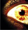Огонь в глазах