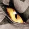 Звериный глаз