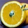 Лимонный пирсинг