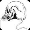 Татуировка крысо-череп