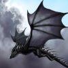 Полет черного дракона