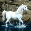 Белый единорог в воде