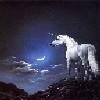 Единорог ночь