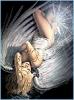 Ангел вид лёжа