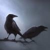 Вороны в ночи